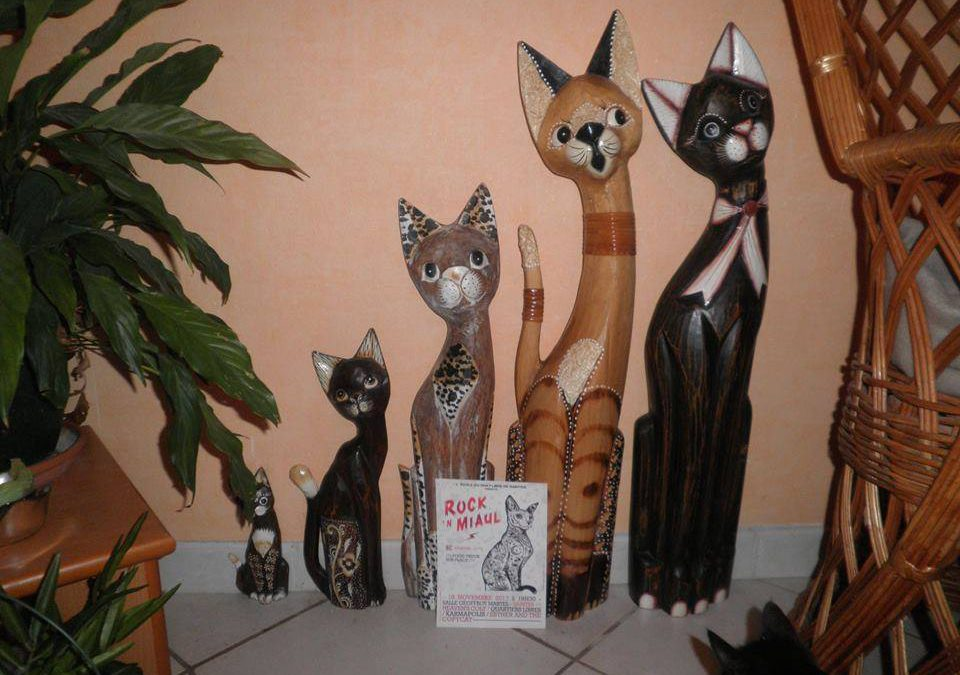Nos chats vont au Rock 'N Miaul