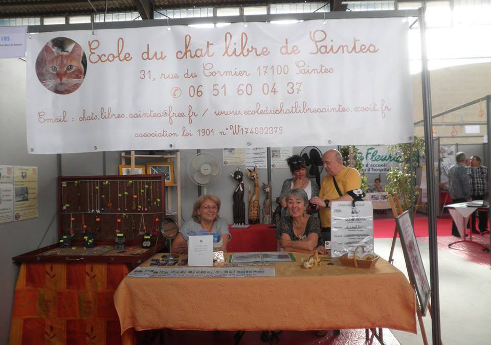 Village des associations 2016