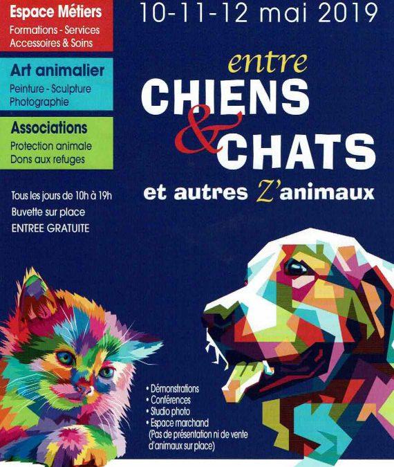 Salon entre chiens et chats 2019