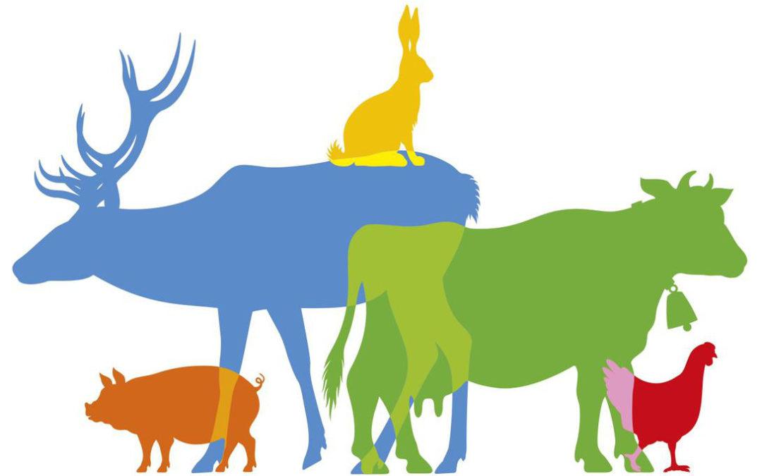 Referendum pour les animaux